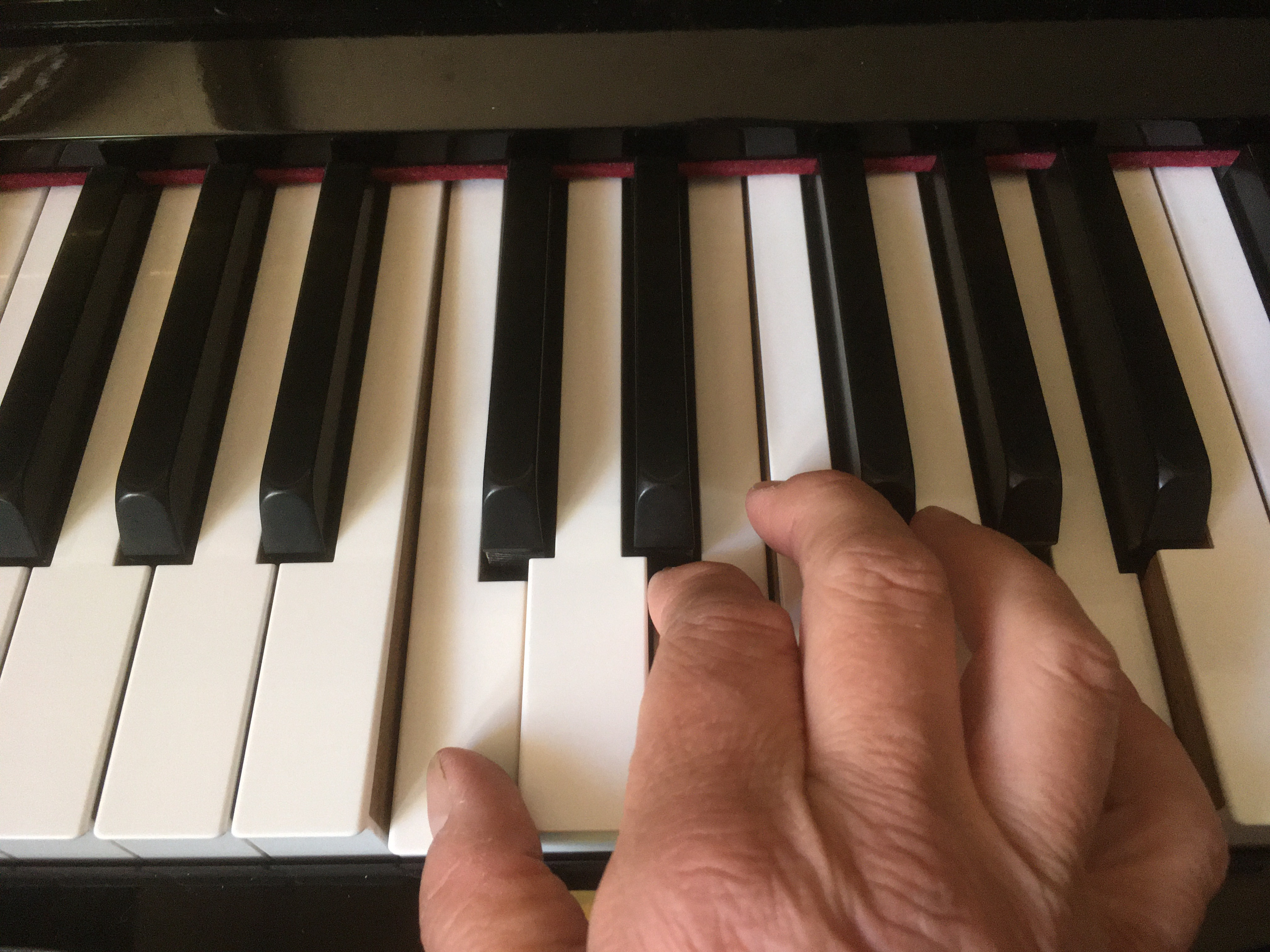 Piano lessons with experienced and encouraging teacher